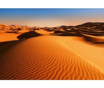 Fotobehang Desert Landscape 366x254 cm