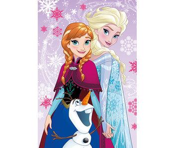 Disney Frozen Plaid polaire Magic 110x150cm