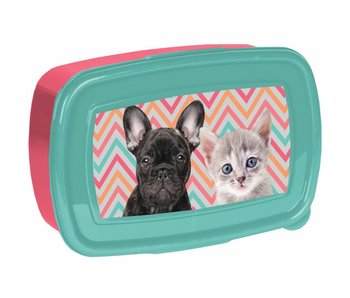 Animal Pictures Lunchbox Dierenvriendjes
