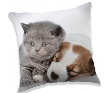 Animal Pictures Throw pillow Puppy and Kitten 40x40cm