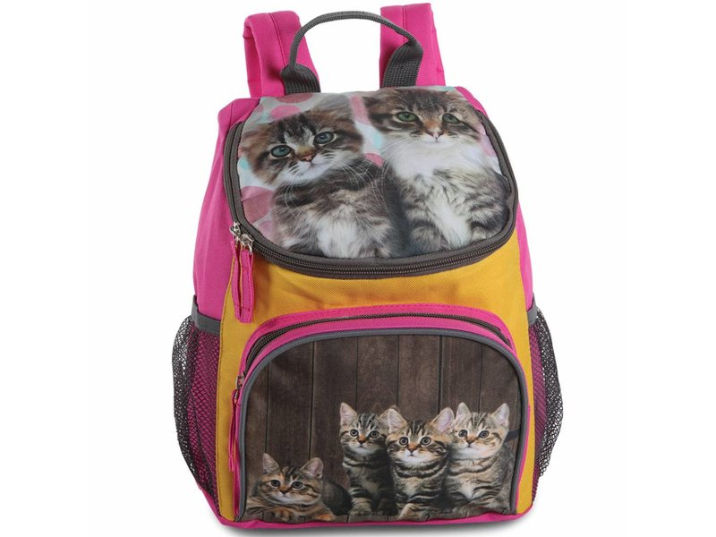 Animal Pictures Kittens - Backpack - 30 cm - Multi