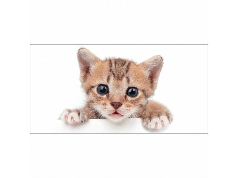 Animal Pictures Kitten - Beach towel - 70 x 140 cm - White