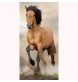 Animal Pictures Paard - Strandlaken - 70 x 140 cm - Multi