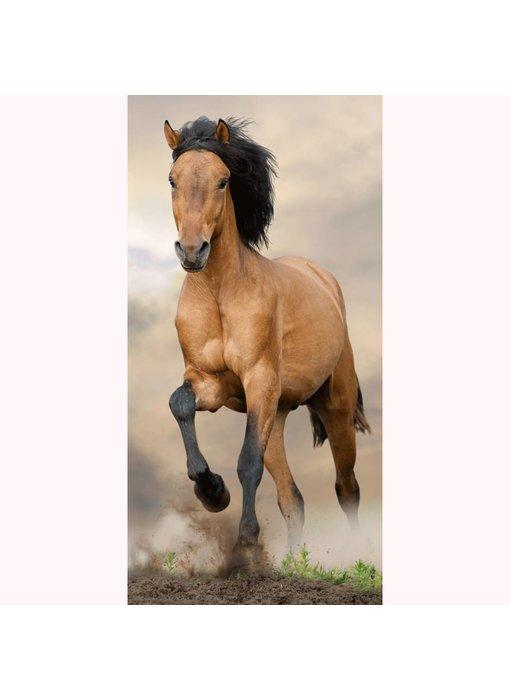 Animal Pictures Strandlaken Paard 70x140 cm