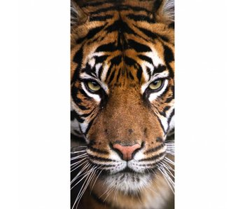 Animal Pictures Serviette de plage Tigre 70x140 cm