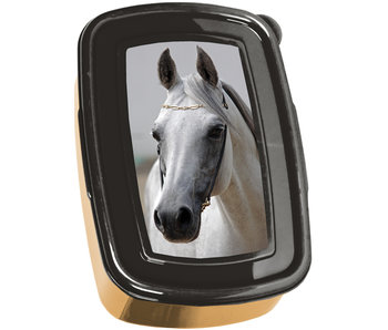 Animal Pictures Lunch box Golden Horse