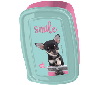 Studio Pets Lunch box Chihuahua Camera