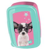 Studio Pets Chihuahua - Lunch box - 18.5 x 13 cm - Multi