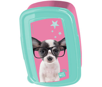 Studio Pets Boîte à lunch Chihuahua