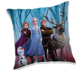 Disney Frozen Cushion Forest 40 x 40 cm