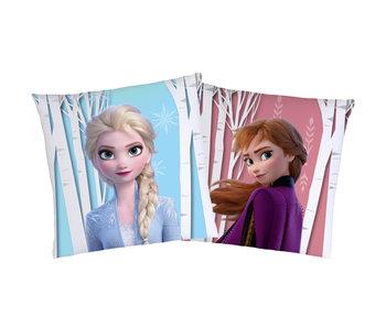 Disney Frozen Coussin Automne 40 x 40 cm