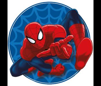 SpiderMan Sierkussen 32 x 29 cm