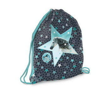 Morning Star Gymbag chevaux fabuleux 42 cm