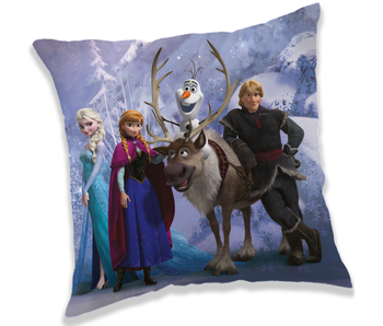 Disney Frozen Winter throw pillow 40 x 40 cm