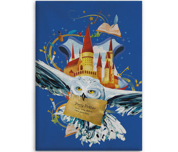 Harry Potter Fleece blanket Air Mail 100 x 140 cm