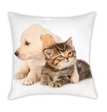 Animal Pictures Sierkussen Cat & Dog - 40 x 40 cm - Multi