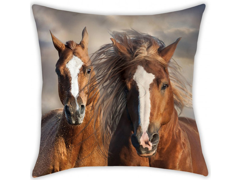 Animal Pictures Cushion - 40 x 40 cm - Multi