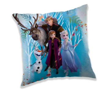 Disney Frozen Cushion 40 x 40 cm