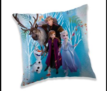 Disney Frozen Kissen 40 x 40 cm