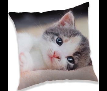 Animal Pictures Kussen kitten 40 x 40 cm