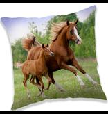 Animal Pictures Bruine Paarden - Kussen - 40 x 40 cm - Multi
