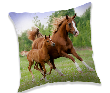 Animal Pictures Pillow Brown Horses 40x40