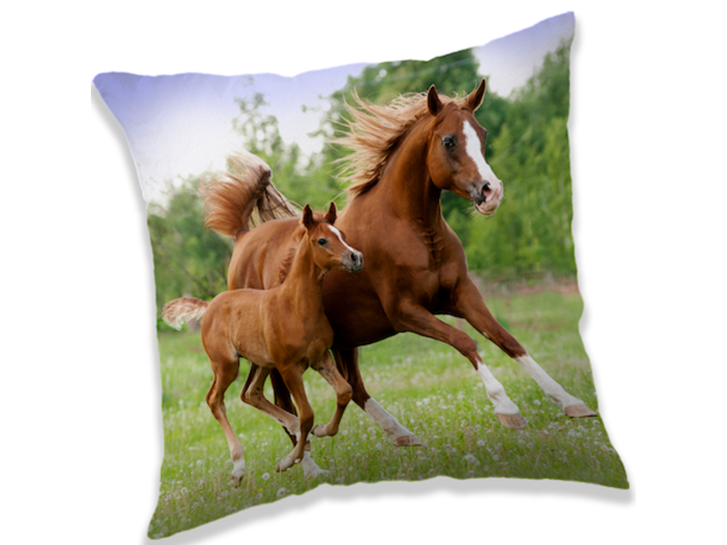 Animal Pictures Brown Horses - Cushion - 40 x 40 cm - Multi