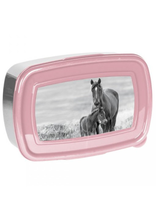 Animal Pictures Lunch box Horses 18 cm