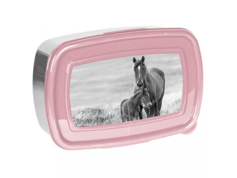 Animal Pictures Lunch box Horses - 18 x 12 x 6 cm - BPA free