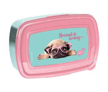 Studio Pets Die normale Brotdose hat eine Bohrung von 18 cm
