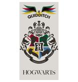 Harry Potter Serviette de plage Quidditch - 70 x 140 cm - Multi