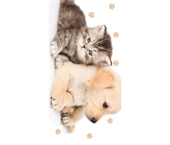 Animal Pictures Beach towel Puppy and Kitten 70 x 140 cm