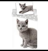 Animal Pictures Duvet cover Gray Kitten - Single - 140 x 200 cm - White
