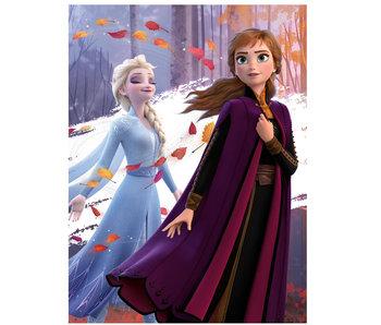 Disney Frozen Fleece Plaid Herbst 100 x 140 cm
