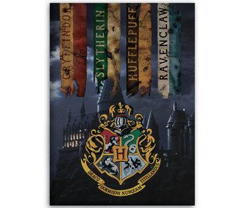 Harry Potter Plaid polaire Poudlard 100 x 140 cm