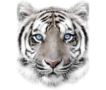 Animal Pictures Plaid polaire Tigre 120 x 150 cm