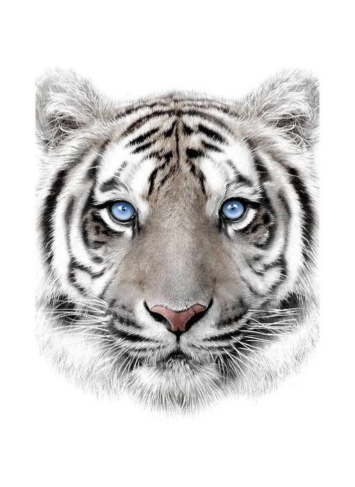 Animal Pictures Fleece plaid Tiger 120 x 150 cm