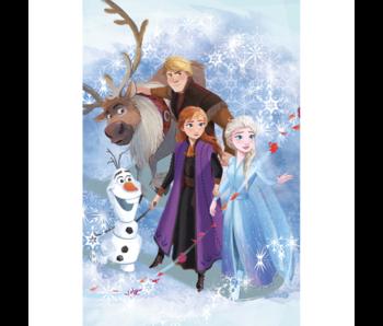 Disney Frozen Fleece deken Avontuur 100 x 150 cm