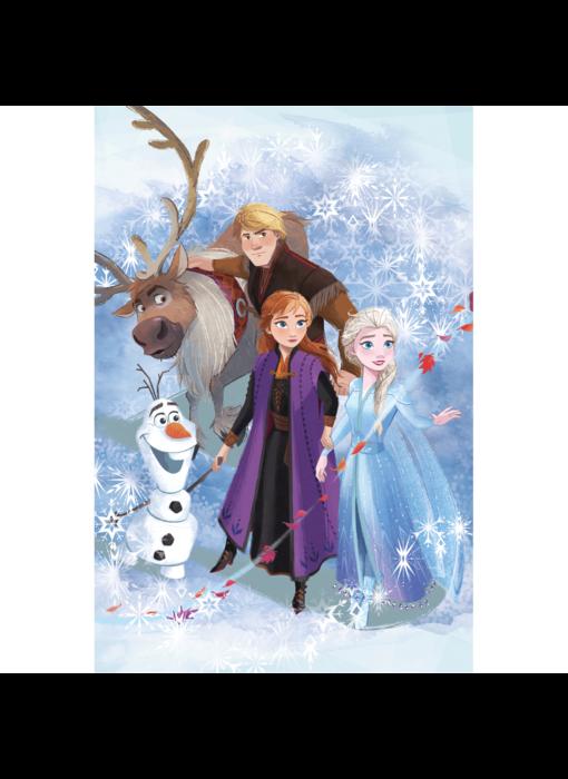 Disney Frozen Fleece plaid Adventure 100 x 150 cm