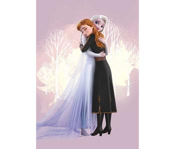 Disney Frozen Serviette de plage Hug 70 x 140 Polyester