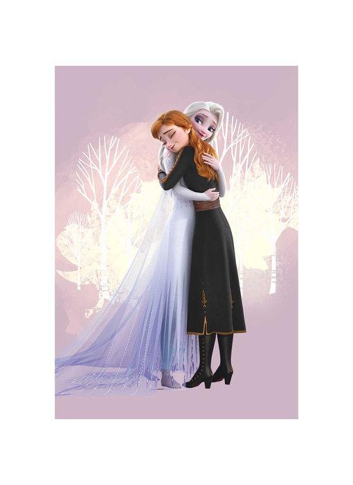 Disney Frozen Strandlaken Hug 70 x 140 Polyester