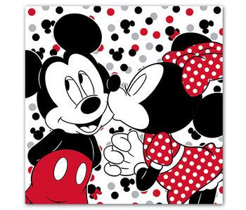 Disney Minnie Mouse kussen met geheim vak