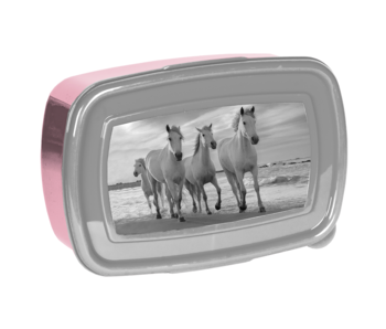 Animal Pictures Lunchbox Horses 18 cm