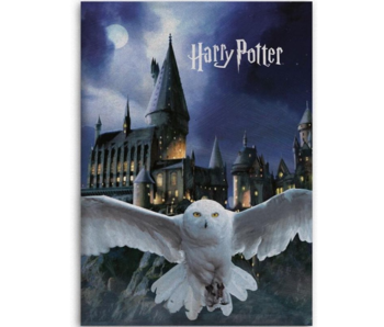 Harry Potter Fleece blanket Hogwarts Hedwig 100 x 140 cm