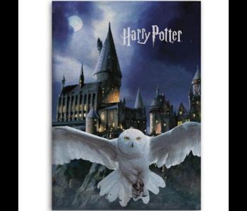 Harry Potter Fleece deken Hogwarts Hedwig 100 x 140 cm