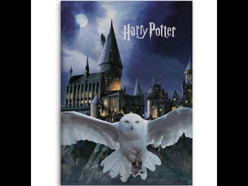 Harry Potter Fleece blanket Hogwarts Hedwig - 100 x 140 cm - Polyester