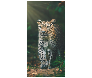 Animal Pictures Strandlaken Luipaard 70 x 140 cm Katoen