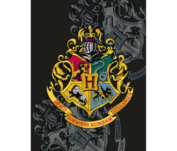 Harry Potter Couverture polaire Ecole de Poudlard 130 x 170 cm