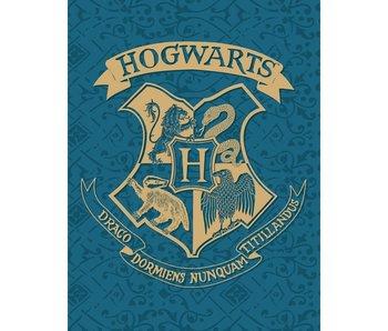 Harry Potter Couverture polaire Poudlard 130 x 170 cm