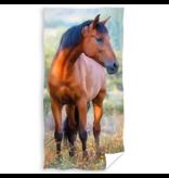 Animal Pictures Strandlaken Paard - 70 x 140 cm - Katoen